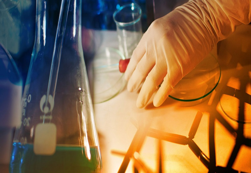 Growth Potential of Drug Discovery and Early Development Outsourcing